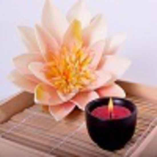Lotus Bamboofragrance Oil Candle Creations