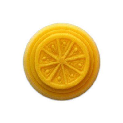 Citrus Soy Melt Mold