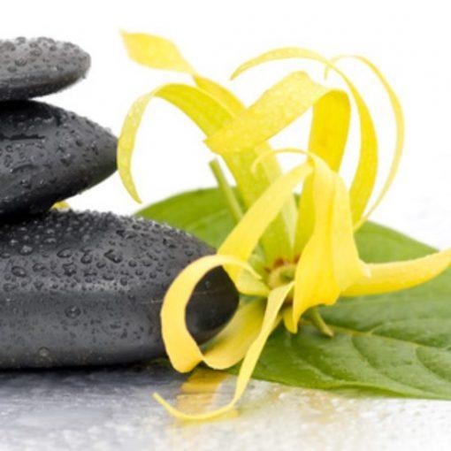 Ylang Ylang Fragrance Oil