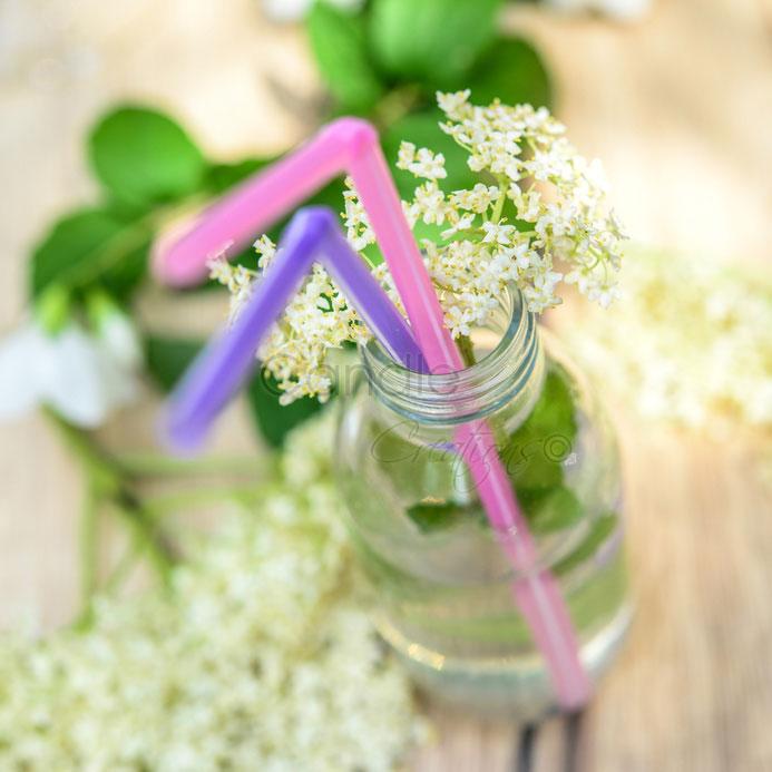Elderflower & Mint