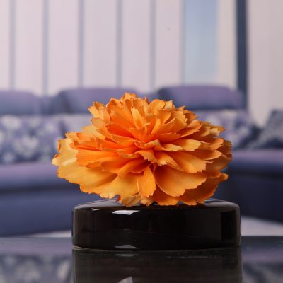 Diffuser Flower Set Carnation With Black Base