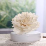 Diffuser Flower Carnation White Vase
