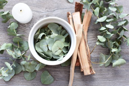 Eucalyptus Matcha Tea Fragrance Oil