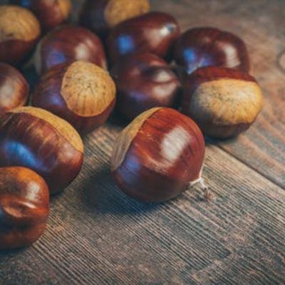 Roasted Chestnut Fragrance Oil